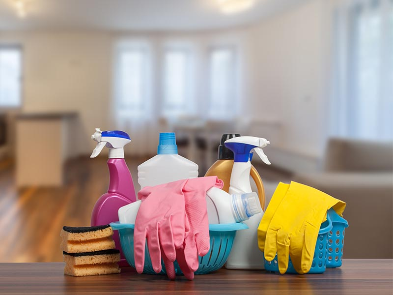 home cleaning supplies on counter